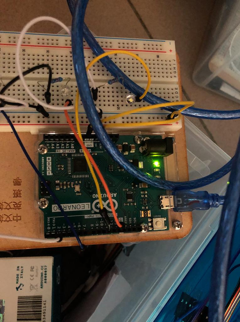 Step 1 Plug LED Light