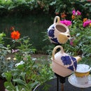 Tea Pot Fountain Planter