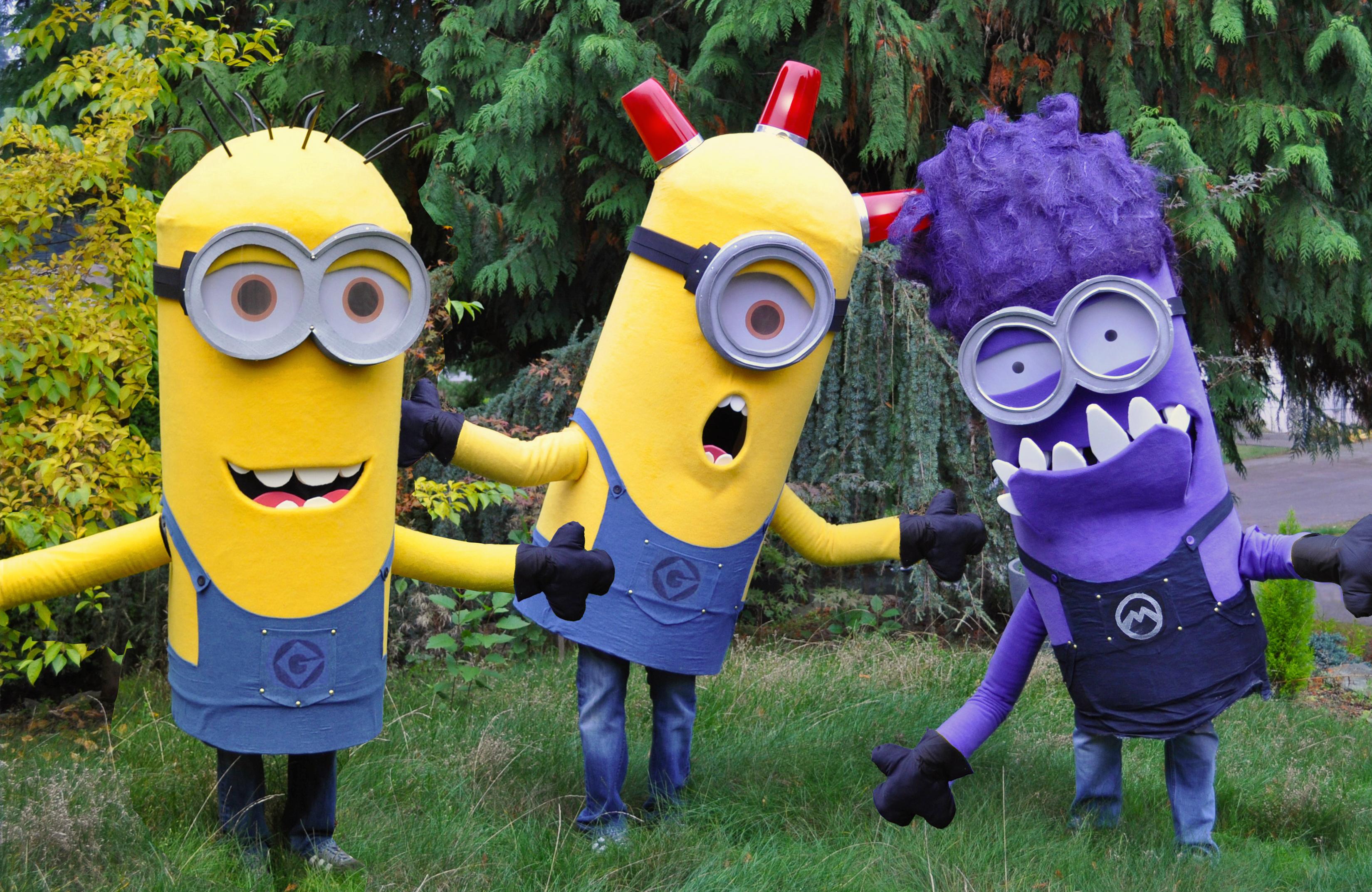 Trio of Minion Costumes (Despicable Me)