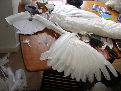 Feathers 2