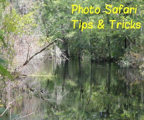 Photo Safari Tricks & Tips