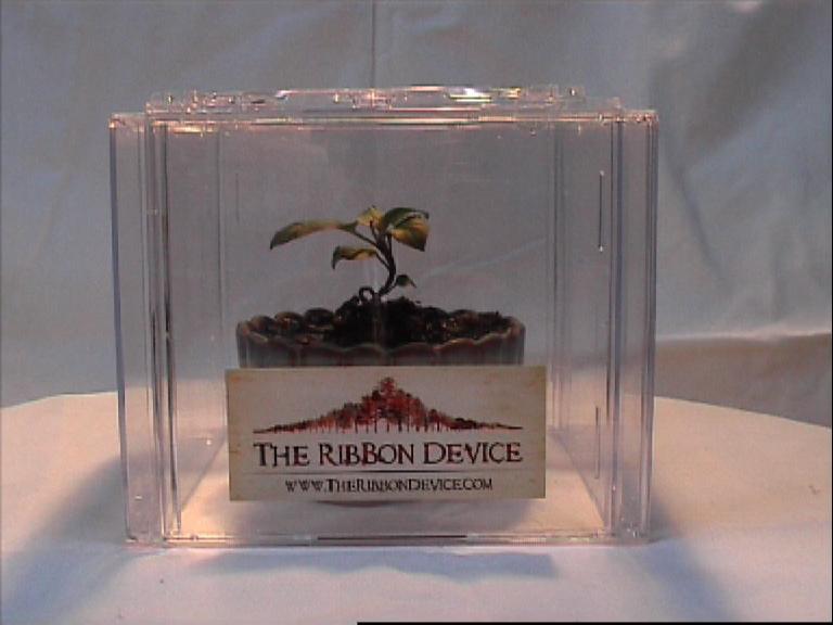 Cd box greenhouse