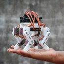 Arduino Powered Micro Quadruped