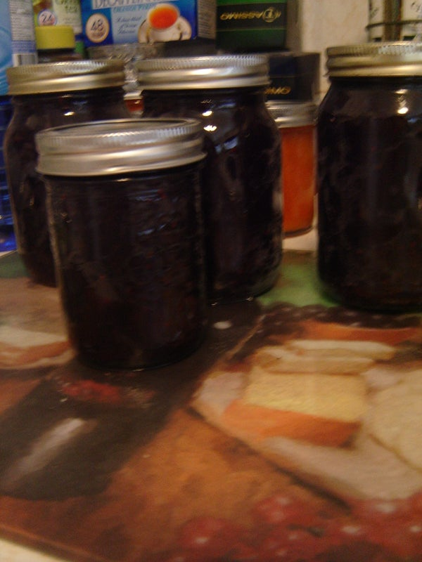 How To: Mixed Berry Jam - Diabetic Friendly
