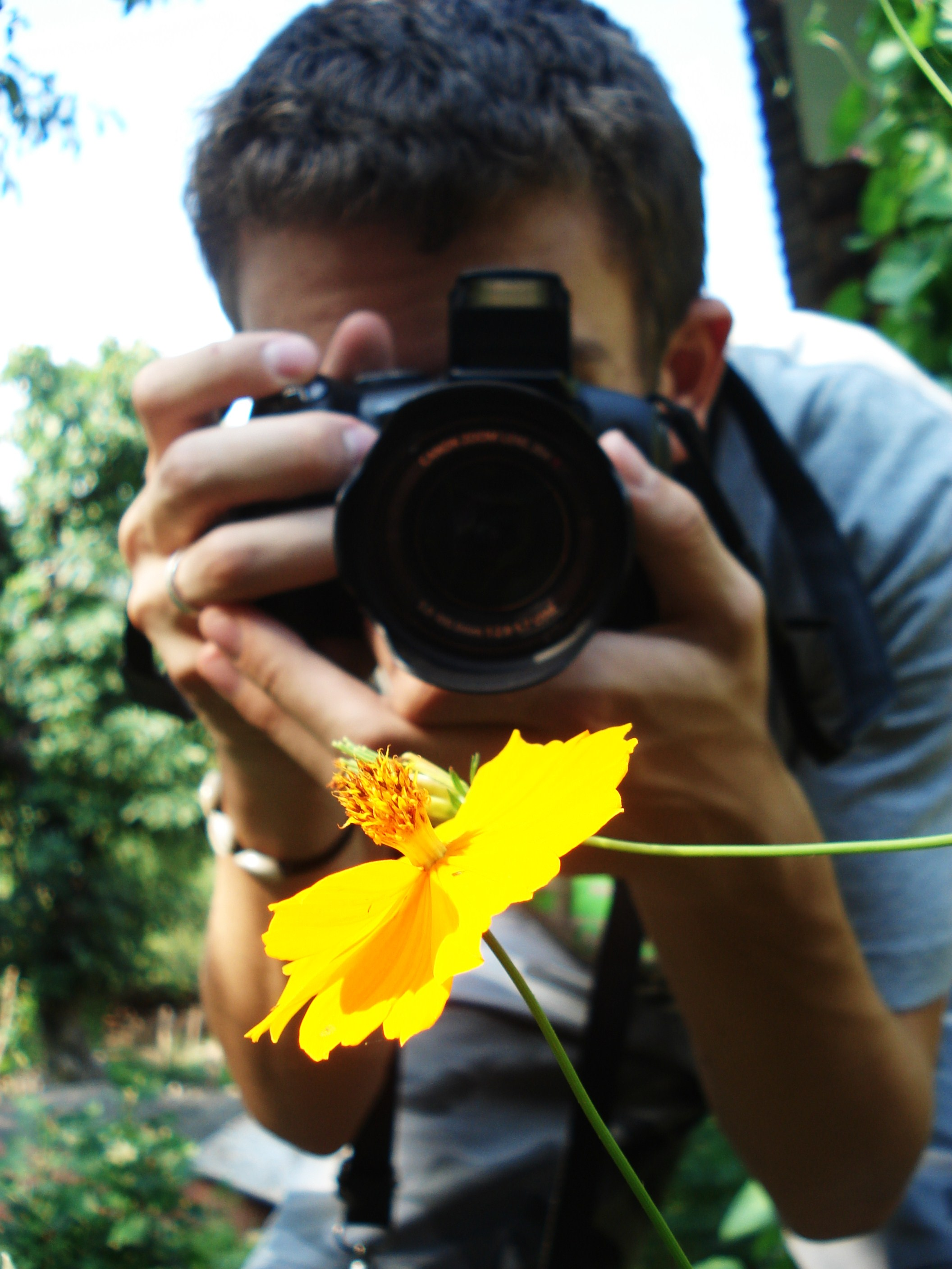 Photography-the guide to great photos