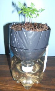 Self Watering Recycled Plant Pot For Growing Herbs And Flowers 13 Steps With Pictures Instructables