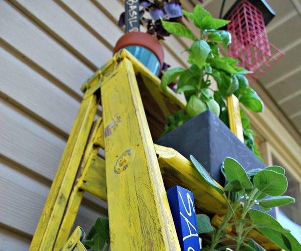 Herb Garden Ladder Planter