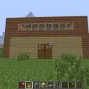 Newbie to Profession version of Minecraft House