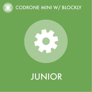 CoDrone Mini With Blockly: Flight Directions