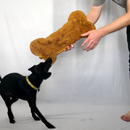 Massive Pumpkin Dog Treat Recipe (Bigger Than My Dog!)