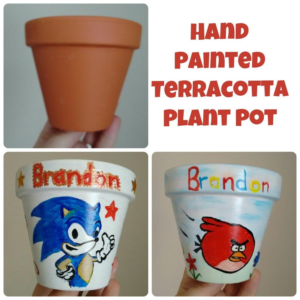 Hand Painted Terracotta Plant Pot