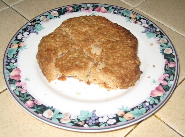 Bachelor Chow - 1 Oatmeal Cookie - Just One!