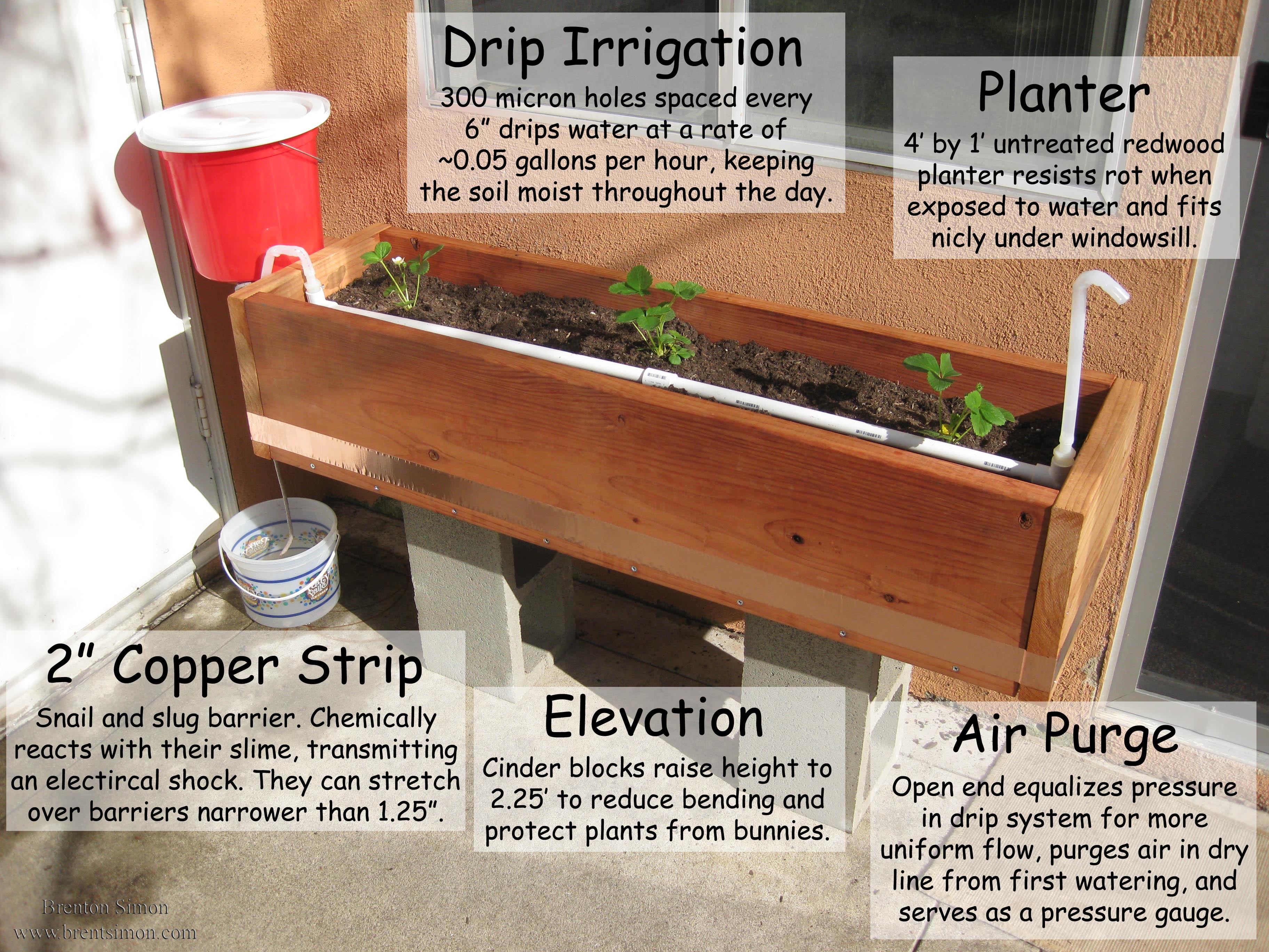 Passive Gravity Irrigated Planter