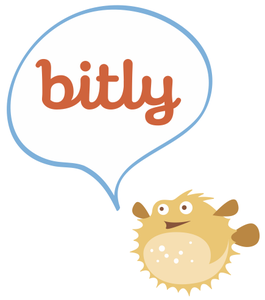 How to Set Up Bitly Branded for Your Custom Domain in 12 Mintues or Less