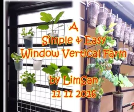 A Simple & Easy Window Vertical Farm