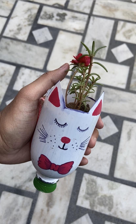 Planting the Plants