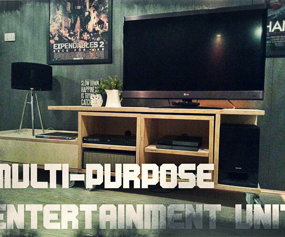 Multi-purpose Entertainment unit