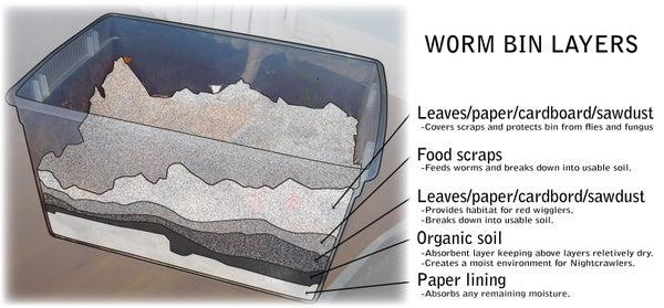 Drain-Free Home Worm Bin Composting
