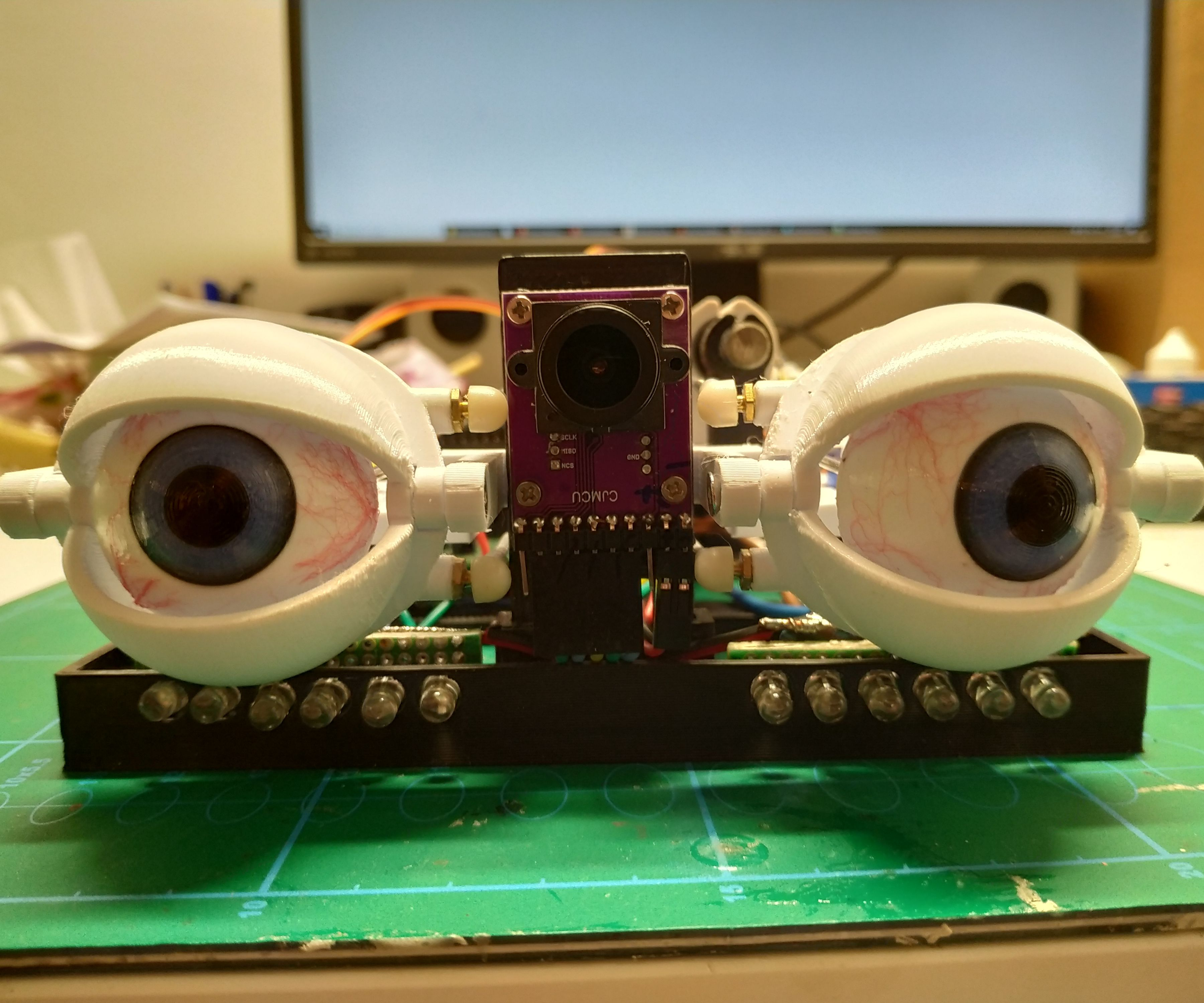 Eye Animatronics