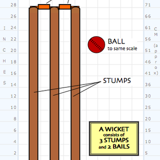 Cricket_-_Stumps.png