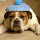 how to cure a headache