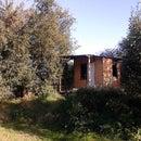 Garden House on Stilts