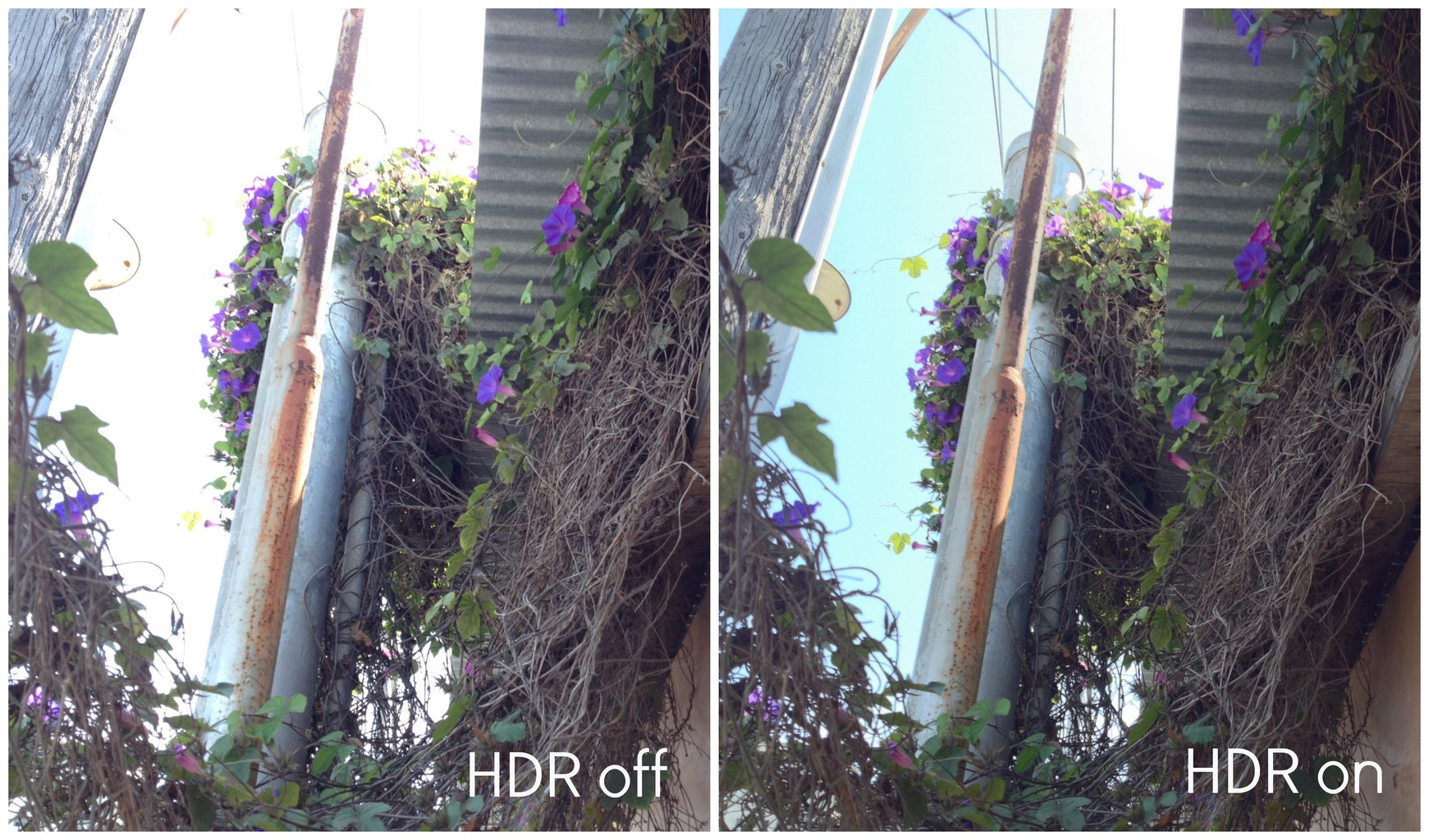 Learn About HDR and Use It!