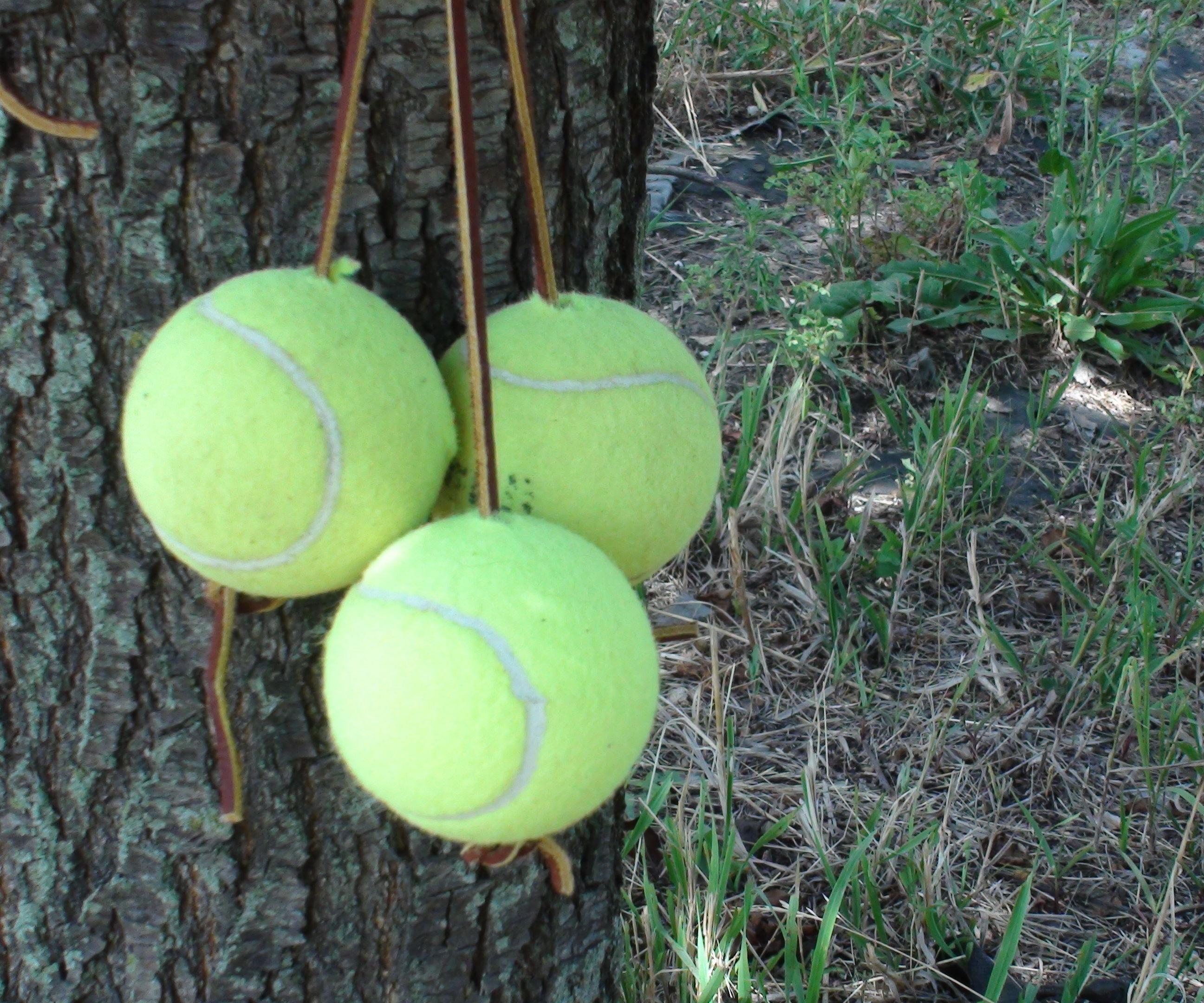 Tennis archery target