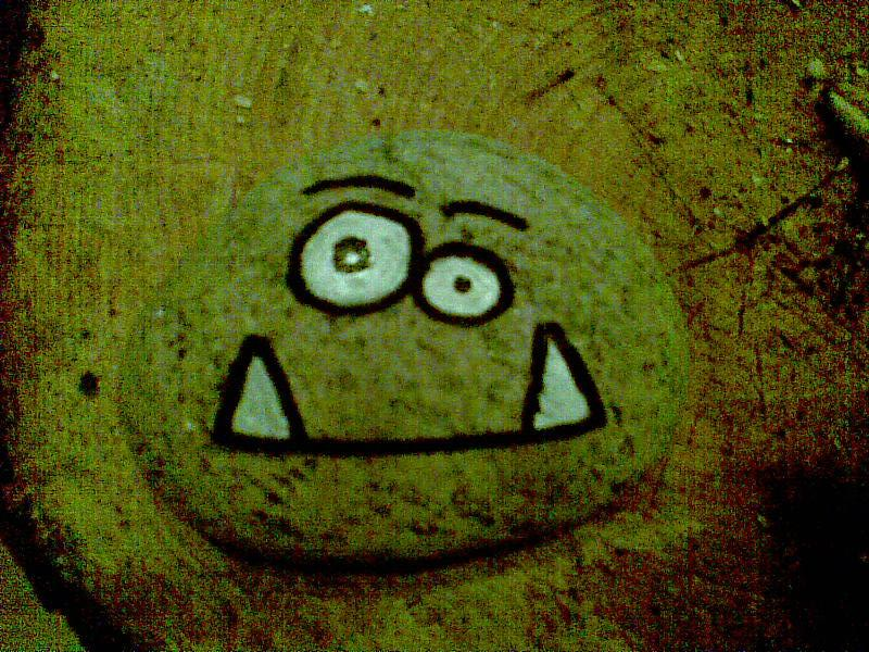 How To Make Your Very Own Pet Rock