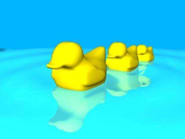 Play Dough, Clay and Ice Cube Mold. for a Duck Shaped Clay Figure or Ice Cube.