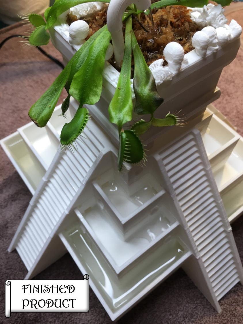 Step 4: Add Bog Plant (Venus Fly Trap)