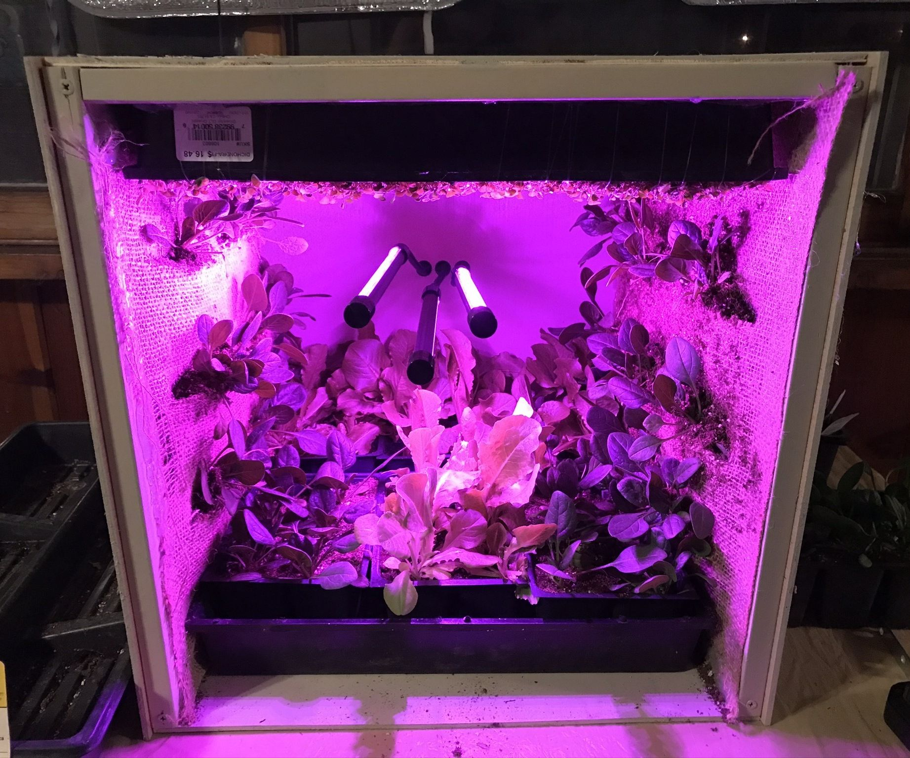 Zero Gravity Garden -Grow Beyond Earth