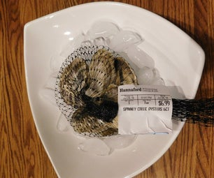I Bought Oysters at the Market - Now What?