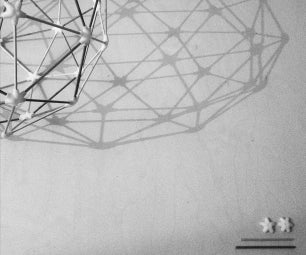 Geodesic Dome: Build a Lamp or a Space Ship