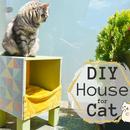 Cube Cat House