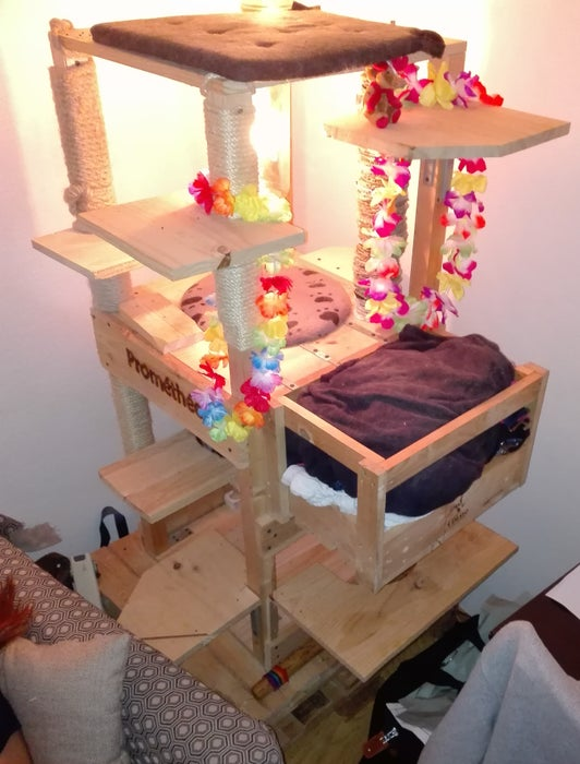 Build a Very Tall, and Sturdy Cat Tree