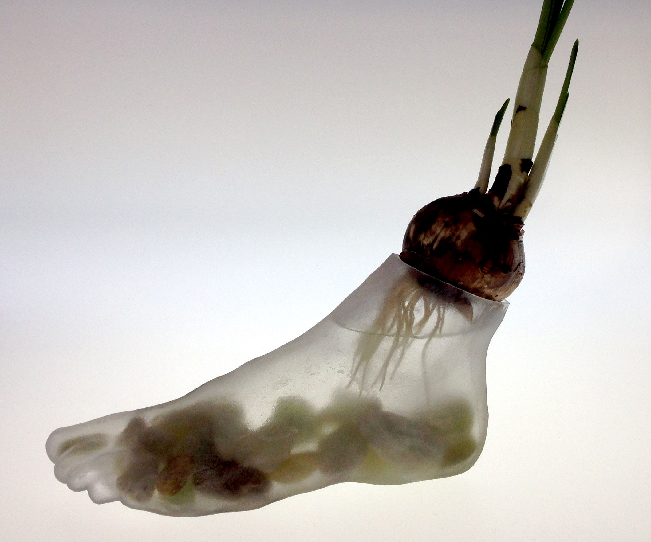 Prosody Flora