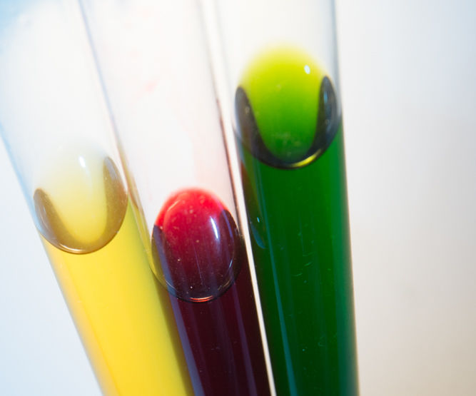 Extract your own plant dyes for food, fabric and leather.