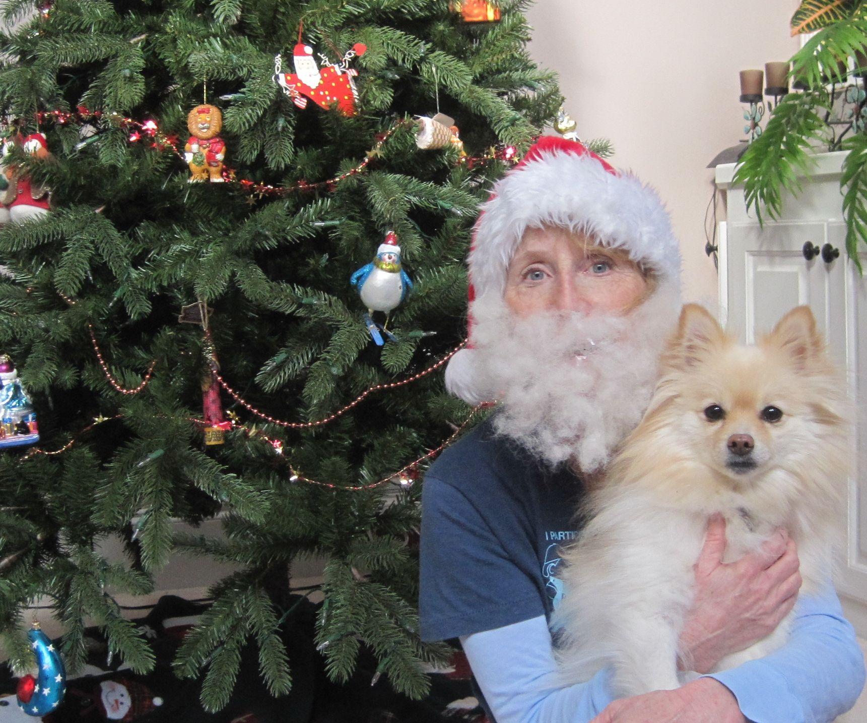 How to make a Santa beard from dog hair