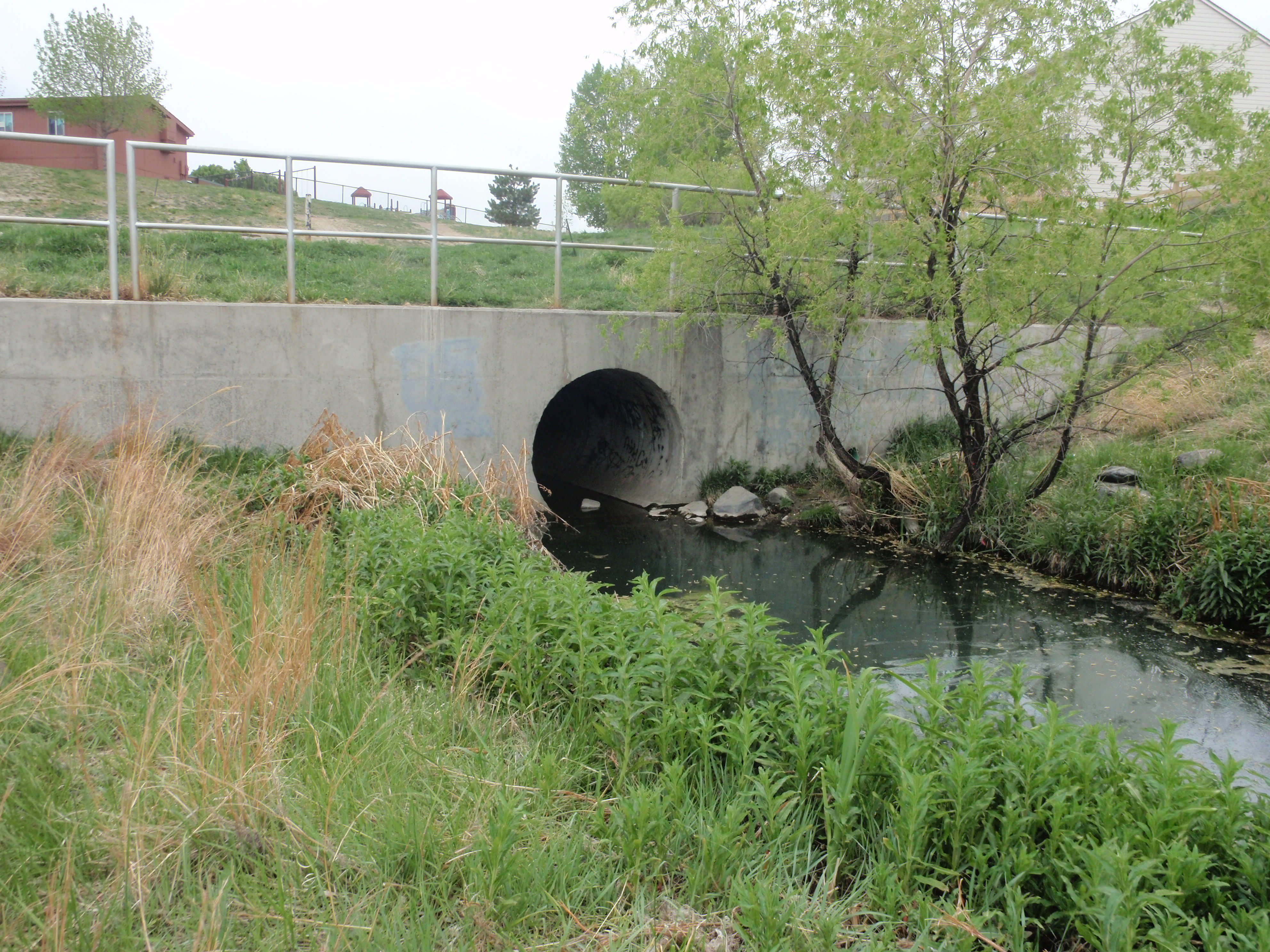 Exploring the Storm Water Drain System