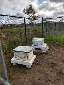 Start a Backyard Hive