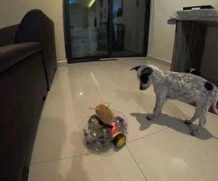 幼犬繁育者:重新定义人类与幼犬互动的安全性