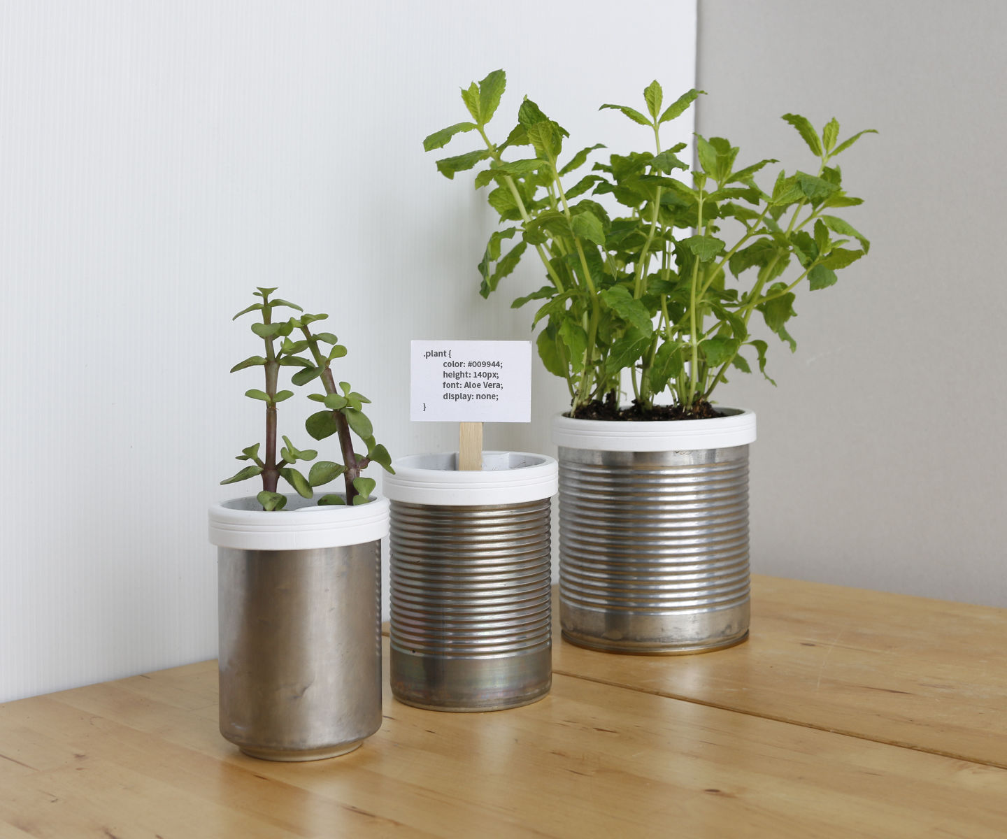 Campbell Planter - Fully 3D Printed Self-Watering Planter