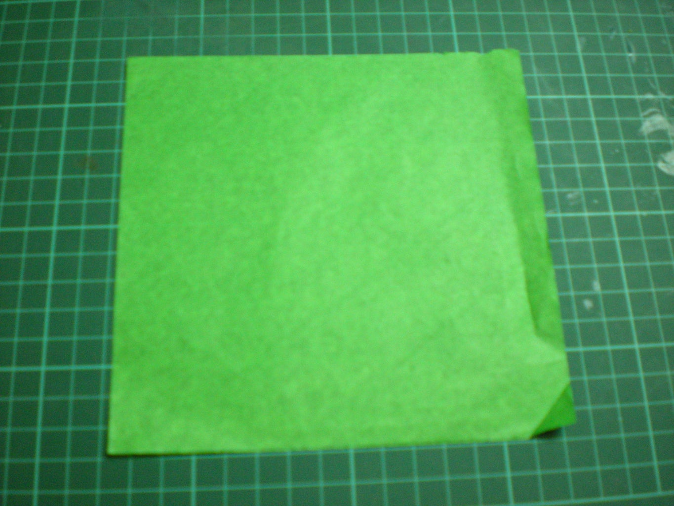 Leaves: Take the Green Square and Fold