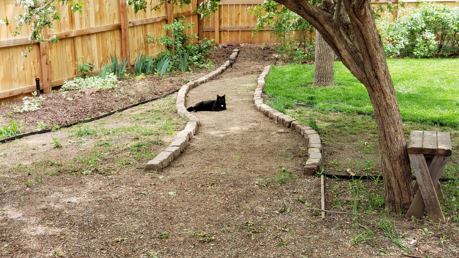 Laying Out Borders and Pathways