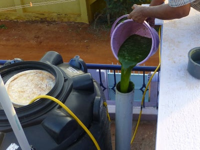 Dilute With Water and Feed the Biogas Digester