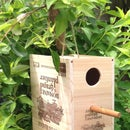 Wine Box Birdhouse