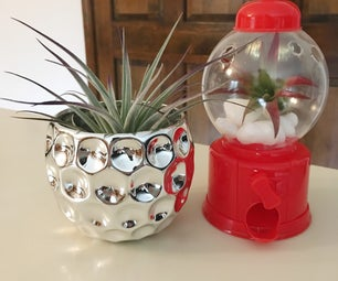 2 Gift-able Projects Using Real Plants!