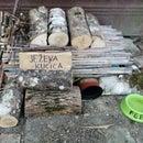 DIY Recycled Hedgehog House