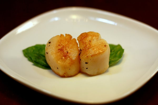 Twice-Cooked Sous Vide Sea Scallops